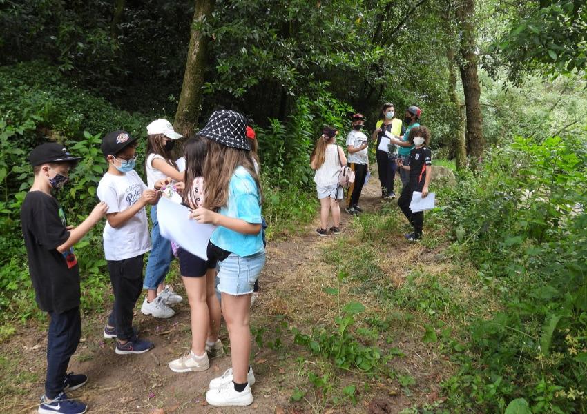 Literacia para a Preservação da Floresta em Gondifelos